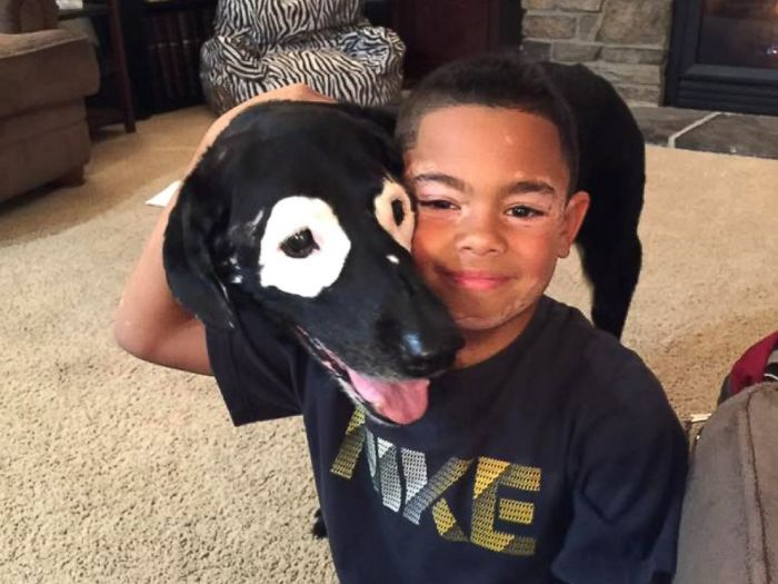 boy-dog-skin-disorder-vitiligo-carter-oregon-3-58d22a5c014f4__700